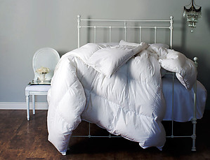 Polish Down Comforters - Ziegler by St. Geneve