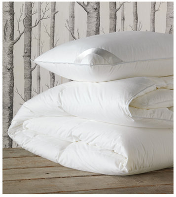de Medici Celesta Luxe Down Pillows & Comforters